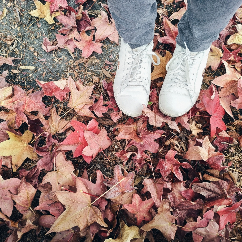 Stepping unto autumn leaves