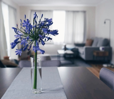 Dining table with a single flower centerpiece