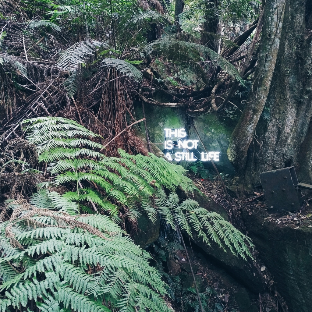 "A neon light saying ""This is not a still life"" in the middle of a forest"