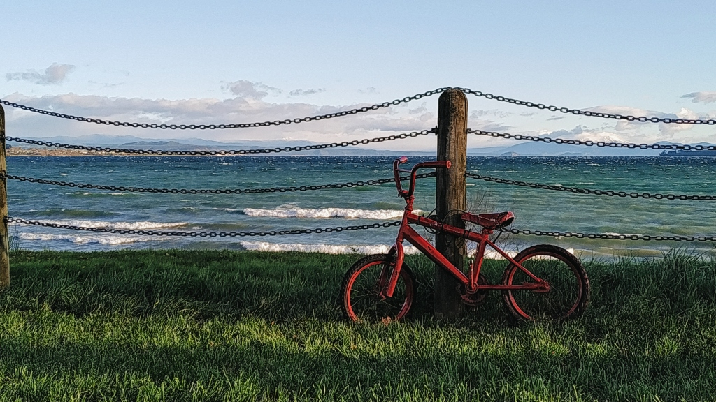 A red bicycle leaning on a fence, with Lake Taupo on the background